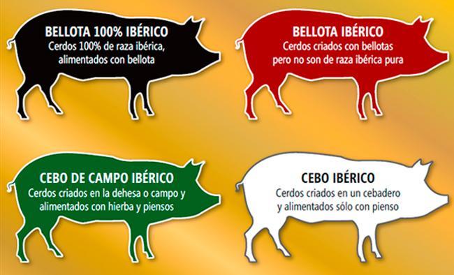 etiquetado-del-jamon-iberico-ministerio-de-agricultura-alimentacion-y-medio-ambiente
