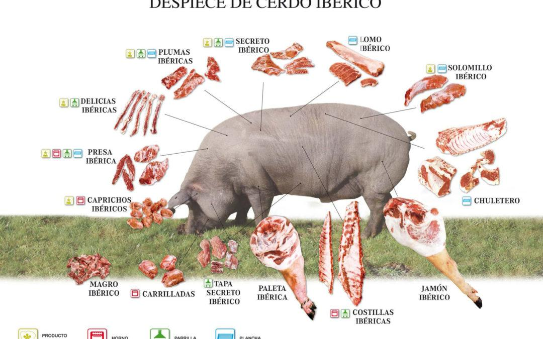 Las 3 piezas de cerdo ibérico que tienes que conocer