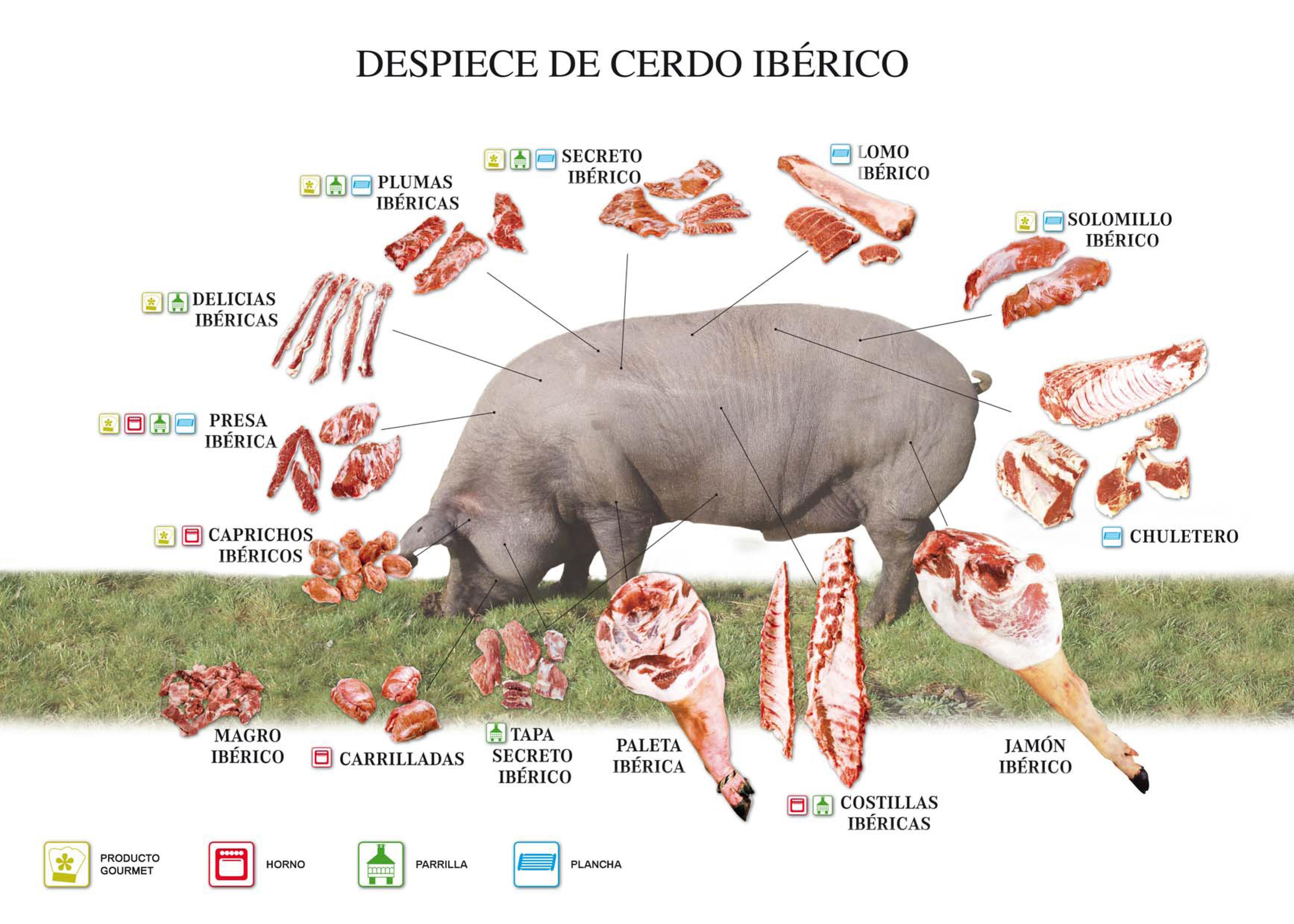 Parts del porc ibèric