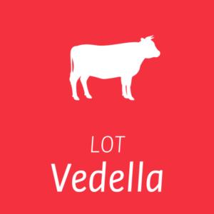 Lot de Vedella Carns Milà